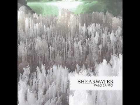 Shearwater,