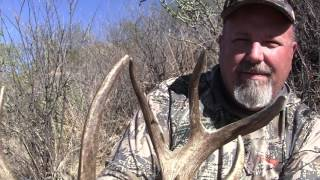 Droptember Mexico Coues 2017