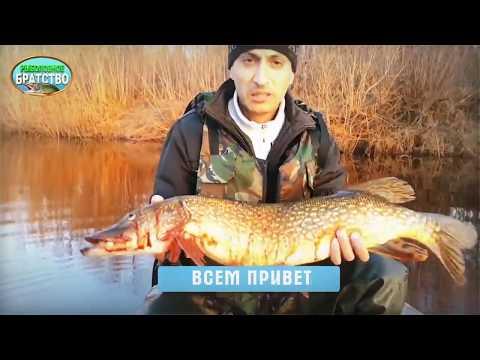 Друзья кому интересна рыбалка на севере, Добро пожаловать на  канал к моему другу Александру Устаеву