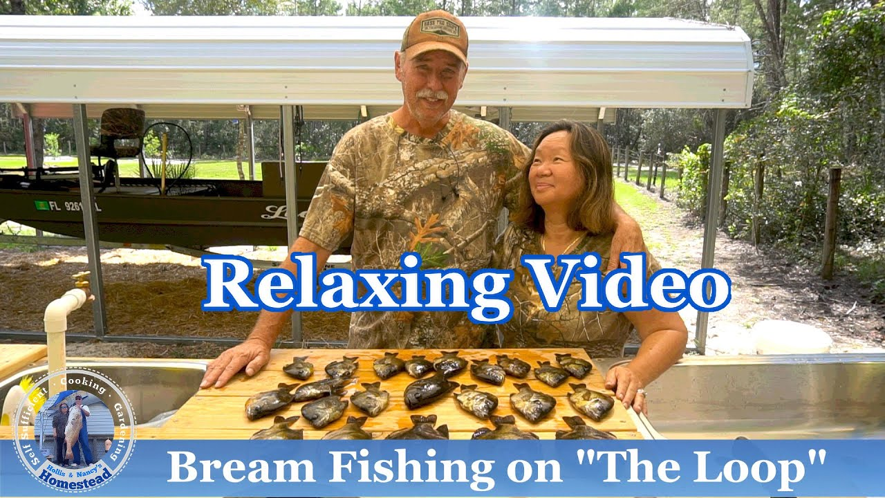 """Bream Fishing on """"The Loop"""" l RELAXING"""