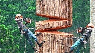 Die mutigsten und coolsten Arbeiter der Welt!