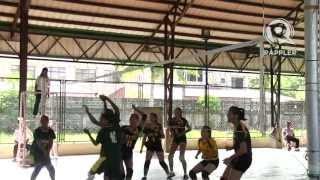 Palarong Pambansa 2012: Scouts, coaches recruit athletes from Palaro