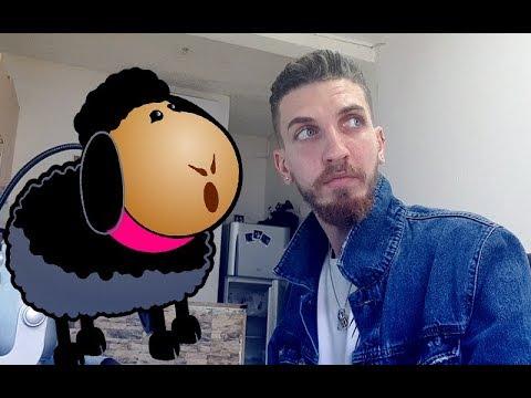 Baxter - כבשה שחורה