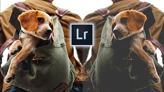 HOW TO CREATE A MATTE EFFECT  N L GHTROOM   in 10 seconds