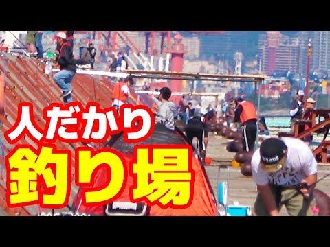 釣り人が多すぎる一文字で釣りしてみた大阪依頼メール遠征