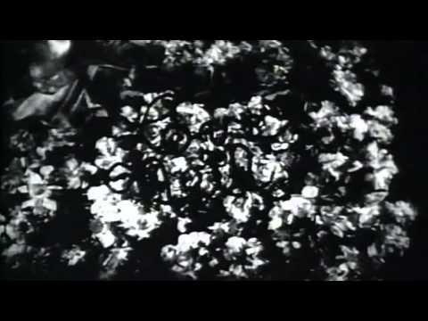 White Zombie (1932) [Full Classic Horror Movie HQ]