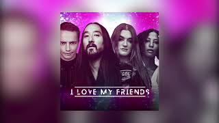 Descarca Steve Aoki & Alle Farben & Icona Pop - I Love My Friends (And My Friends Love Me)