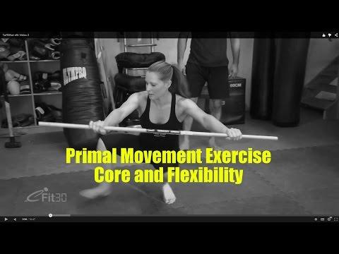 Primal Movement Exercise Routine 1