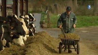 Pas de repos pour les agriculteurs le premier de l'an