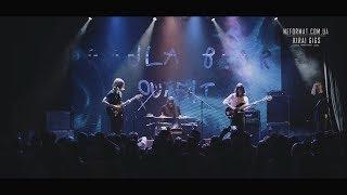 Padla Bear Outfit - 1 - Фанаты - Live@Atlas [27.05.2017] Icecream Fest