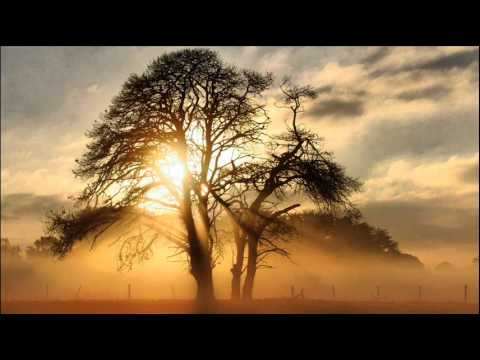 Aerotek - Inner Sunlight (Original Mix)