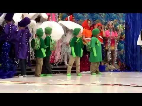 Zephyr Cove Elementary School Spring Musical 2016