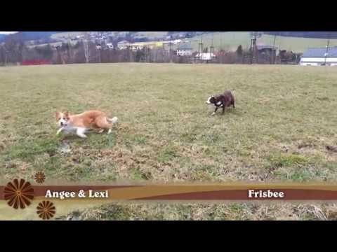 Angee a Lexi - frisbee playing