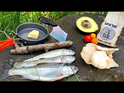 BOBBER FISHING For Rainbow Trout! (Catch & Cook) WILD OYSTER MUSHROOM Recipe!!!