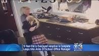 CBS Local News - YouTube