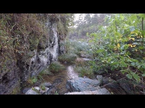 Mountain Creek: Roadside Treasure Hunt