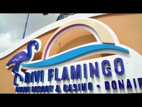 Find the Best of Bonaire at Divi Flamingo Beach Resort & Casino
