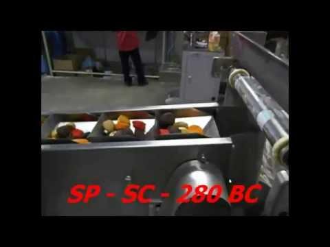 [SP-SC-280BC] Máy Đóng Gói Bánh Quy Kèm Băng Tải Gầu