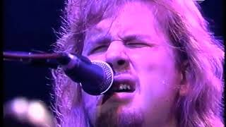 Jeff Healey 🎸 As The Years Go Passing By