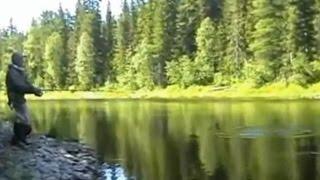Таежная Рыбалка / Глухая непроходимая тайга / Живописная рыбалка и тайга