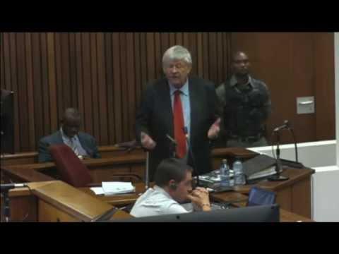LIVE: Oscar Pistorius trial, day 29 - part 2