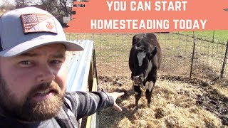 Warning You Will Start Homesteading After You See This! I Show You Just How Easy It Can Be