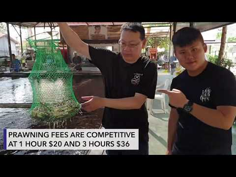 Ah Hua Fishing And Prawning At Singapore Neo Tiew Lane 2, Gallop Kranji Farm Resort