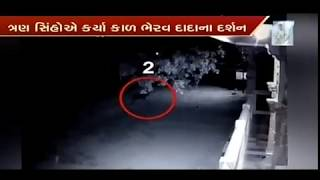 Amusing CCTV footage shows 3 lions visiting the temple in Junagadh | Vtv News