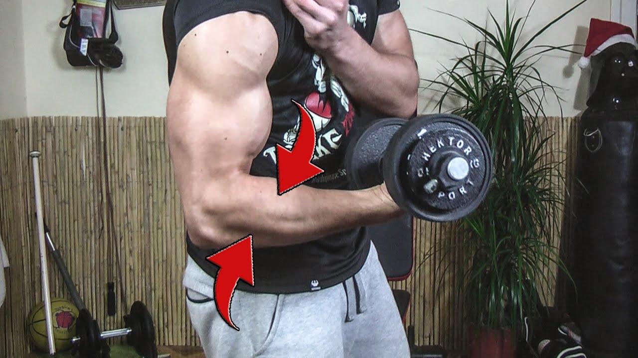 biceps jak powiekszyc
