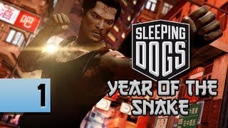 Sleeping Dogs Walkthrough - Year of the Snake DLC Part 1 Demoted Let's Play Gameplay Commentary