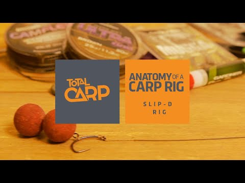 Anantomy Of A Carp Rig - Slip D Rig
