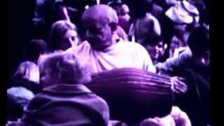 Om Namah Shivaya (We Plants Are Happy Plants Remix)