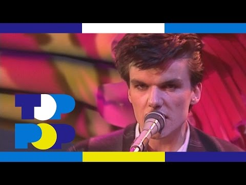 The Blow Monkeys  Digging Your Scene • TopPop
