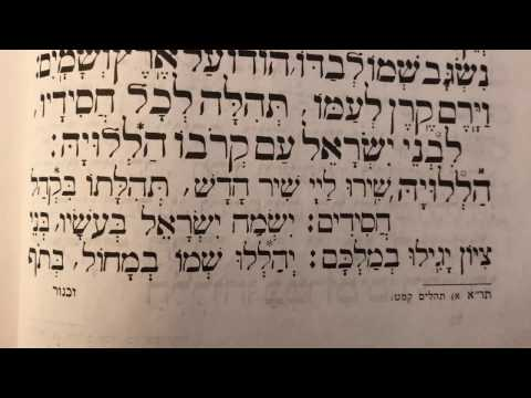 Tefilah 12 Halleluka, Shiru La'Hashem- Prayer - Sharchris - תפילה 12 הללו׳ שירו לה׳ – שחרית