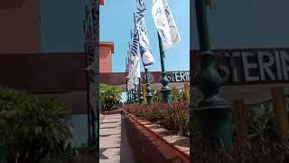 видео обзор отеля Астерия кемер
