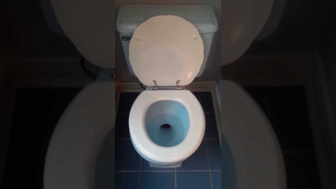 toilet flush american standard cadet 3 blue