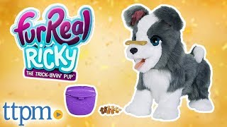 FurReal Ricky the Trick-Lovin' Pup [REVIEW] | Hasbro Toys & Games