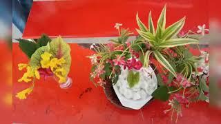 Boston Catering College in Madurai   Floral Arrangement