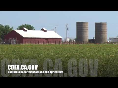 Central California San Joaquin Valley Agriculture