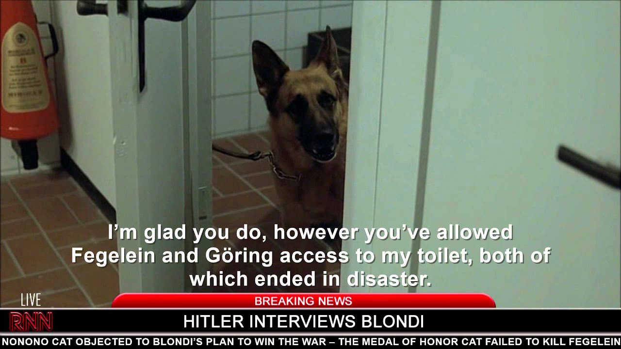 A crazy day in Hitler's bunker: Part III