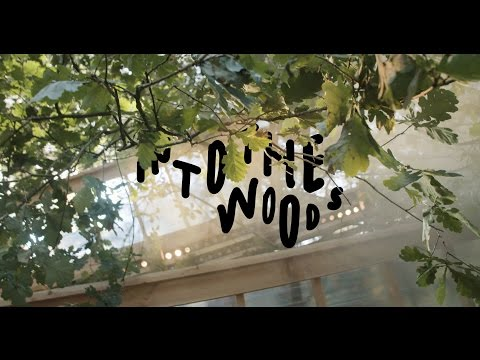 Into the Woods Festival 2016 | Aftermovie