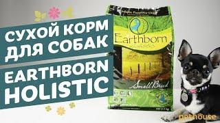 Earthborn Holistic | Эрсборн Холистик - Сухой корм для собак обзор