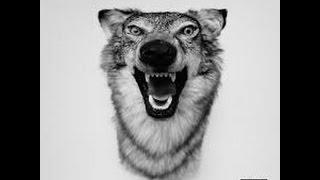 Top 10 yelawolf songs