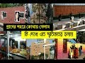 Nostalgic Moments in My City কোথায় গেলাম আজ | কেন এত স্মৃতিকাতর আমি | Chittagong Tour Vlog - o4