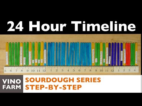 Sourdough Bread 24 Hour Timeline - Step by Step