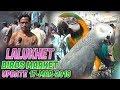 Lalukhet Sunday Birds Market 17 3 2019 Latest Updates Jamshed Asmi Informative Channel Urdu Hindi mp3