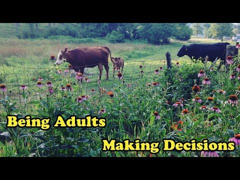 Scavenger Life Episode 319: Being Adults, Making Decisions