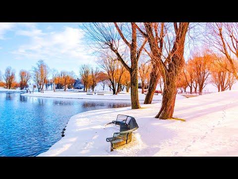 ⛄ Beautiful Winter Snow Scene Relaxing Piano Music -  Soothing Calm Sleep Meditation Yoga Music #08