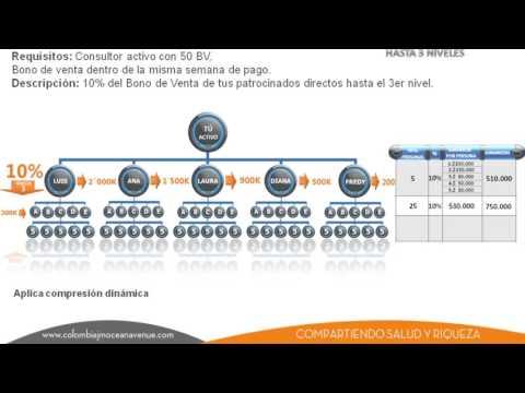 Plan de Compensación JM Ocean Avenue COMPLETO
