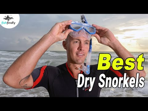 Best Dry Snorkels In 2020 – Top Products Guide & Reviews!